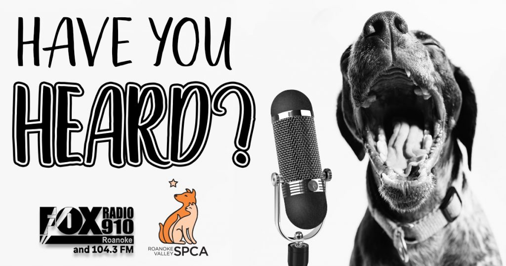 Have You heard? Dog with microphone.